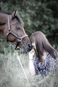 Pferdefotograf, Pferd, Pferdebilder, Pferdefotos